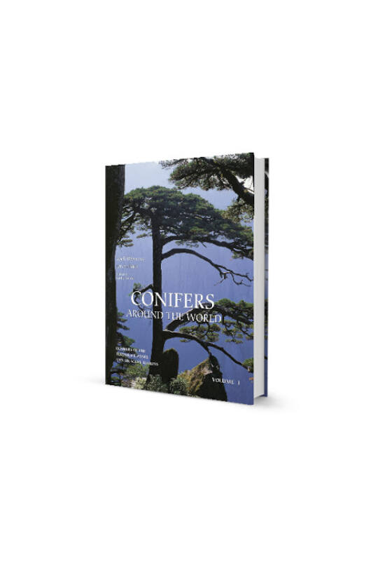 Debreczy Zsolt - Conifers around the world I.